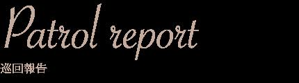 Patrol report 巡回報告